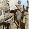 """""""Le Renard du désert"""" (mai 1942)"""