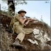 Sniper anglais (6 octobre 1943)