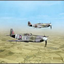 Escadrille de P-51 (1942)